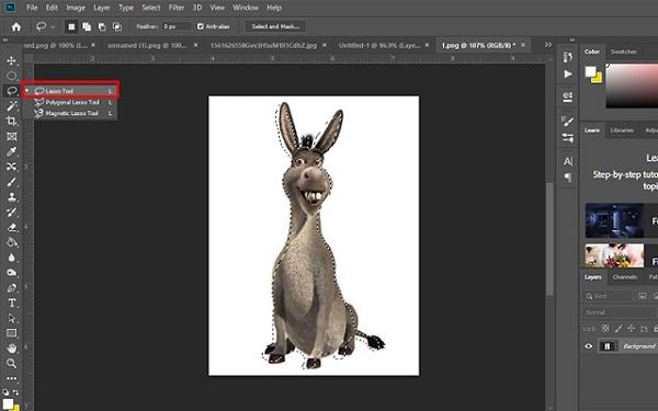 Cách tách nền trắng trong photoshop cs6 bằng Lasso Tool